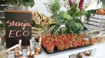 zrównoważony catering